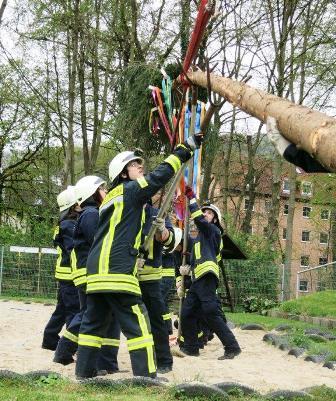 Maibaumsetzen auf dem Westsportplatz: 15 Meter ist der Baum lang, und er stammt – wie immer – aus dem Jenaer Forst. Foto: Frank Kramer.