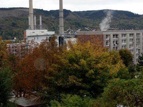 Auch in Winzerla spürt man schon überall den Herbst