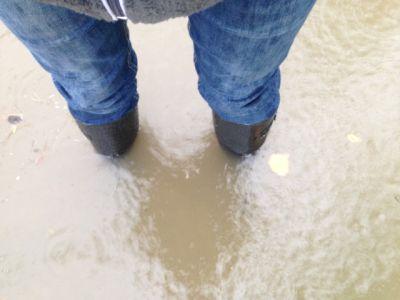 Vielen Jenaer Bürgern steht das Wasser nicht nur bis zu den Knien!