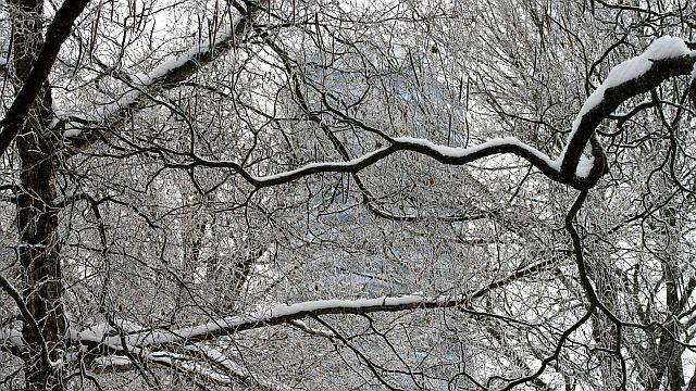 Ein weiterer Wunsch: Kommt gut durch den Winter!