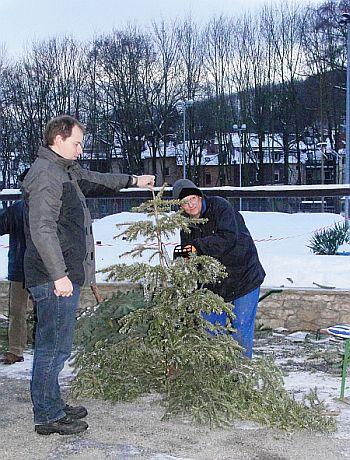 Vom Weihnachtsbaum zum Wurfpfeil